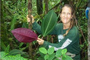 Ann with Miconia leaf